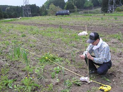 タニムラボ試験農場